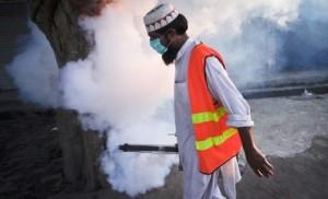 dengue.feverx616