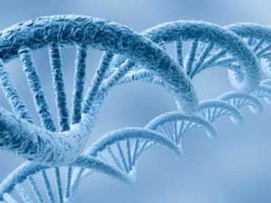 rare-diseases-1