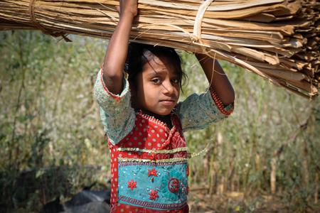 child labor and its effects on There are 168 million children worldwide trapped in child labor, accounting for almost 11 percent of the overall child population.